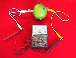 investigatory project using apple Explore investigatory science projects,science projects fair ideas experiments, kids project experiment ideas, science experiment projects, simple, cool, fun and easy science fair experiments, topics for science experiments, and also for middle school, elementary school for class 5th grade, 6th, 7th, 8th, 9th 10th, 11th, 12th grade and high school, msc and college students.
